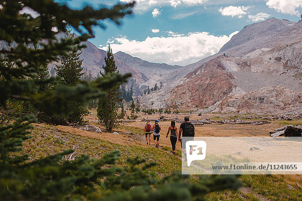 Group of friends hiking along pathway  rear view  Mineral King  Sequoia National Park  California  USA