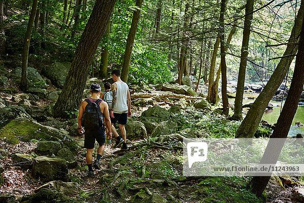 Gruppe von Freunden beim Trekking durch den Wald  Harriman State Park  New York  USA