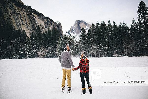 Rückansicht eines Paares  das sich auf schneebedeckter Landschaft an den Händen hält