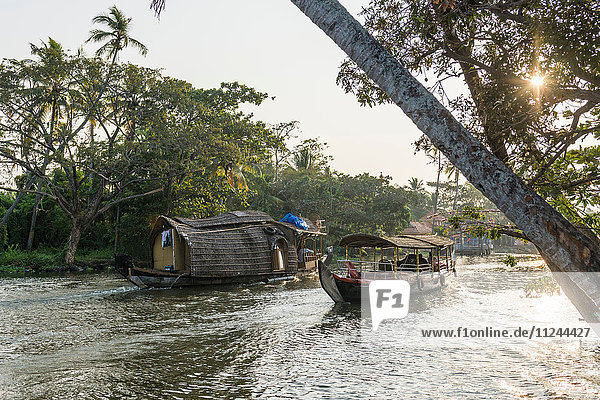 Hausboote  Kerala Backwaters  Kerala  Indien