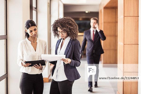 Junge Geschäftsfrauen lesen Papierkram im Bürokorridor