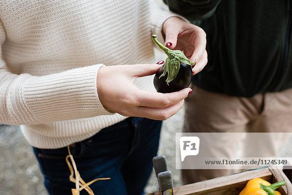 Woman's hands holding eggplant at organic farm shop