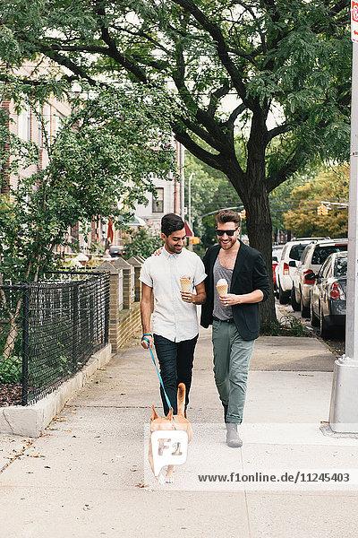 Junges männliches Paar isst Eistüten  während es mit seinem Hund auf dem Bürgersteig in der Vorstadt spazieren geht