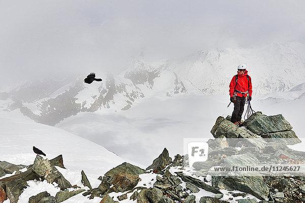 Mann auf dem Gipfel eines schneebedeckten Berges schaut Vogel im Flug an  Saas Fee  Schweiz