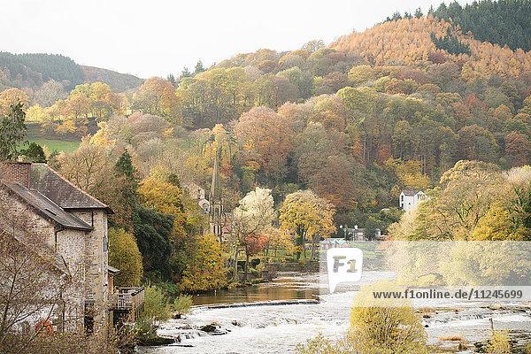Herbstansicht von River Dee  Llangollen  Nordwales