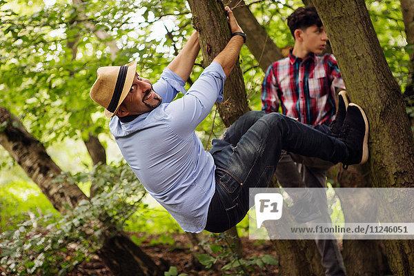 Porträt von Vater und Sohn,  beim Herumalbern,  im Baum hängend
