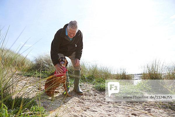 Mann streichelt Haushund auf Sanddünen  Constantine Bay  Cornwall  UK