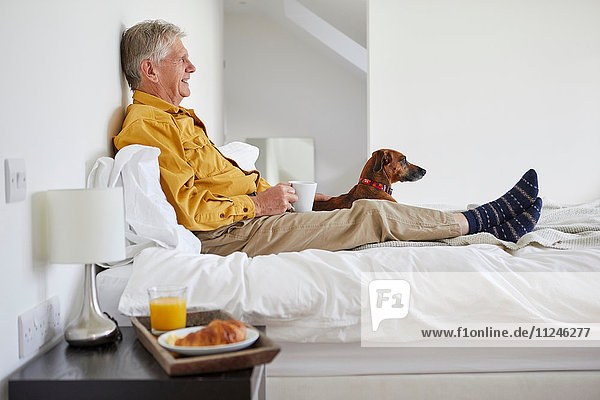 Dog enjoying breakfast in bed with owner