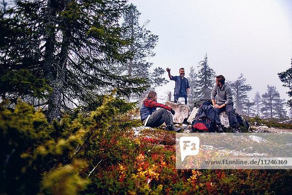 Wanderer entspannen und unterhalten sich im Park  Sarkitunturi  Lappland  Finnland