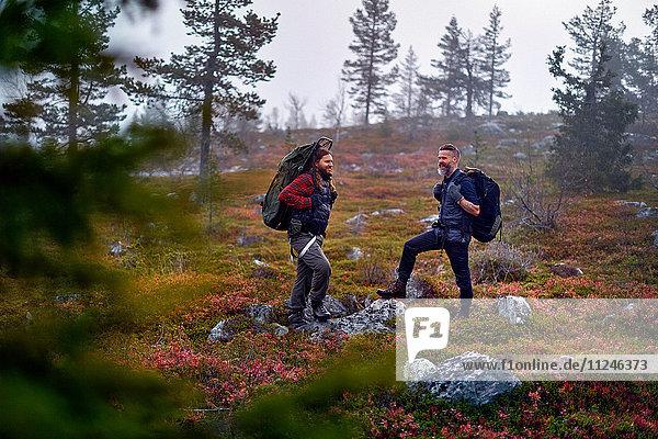 Wanderer warten im Park  Sarkitunturi  Lappland  Finnland