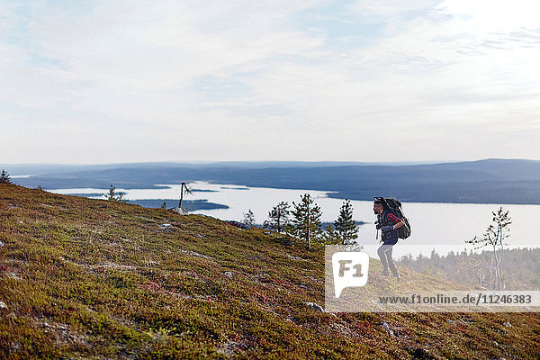 Wanderer durchquert Feld am See  Keimiotunturi  Lappland  Finnland