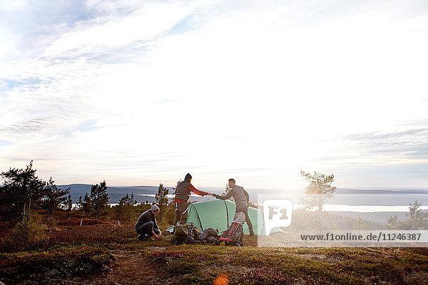 Wanderer beim Zeltaufbau  Keimiotunturi  Lappland  Finnland