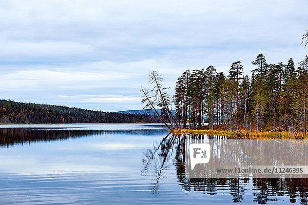 Aussichtsreicher See  Kesankijarvi  Akaslompolo  Lappland  Finnland
