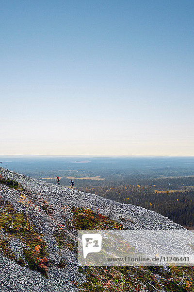 Wanderer beim Aufstieg auf einen felsigen Steilhang  Kesankitunturi  Lappland  Finnland