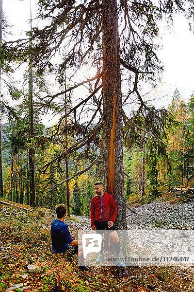 Wanderer rasten am Baum im Wald  Kesankitunturi  Lappland  Finnland