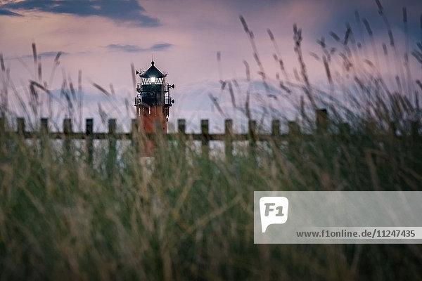Leuchtturm  Hörnum  Sylt  Schleswig-Holstein  Deutschland  Europa