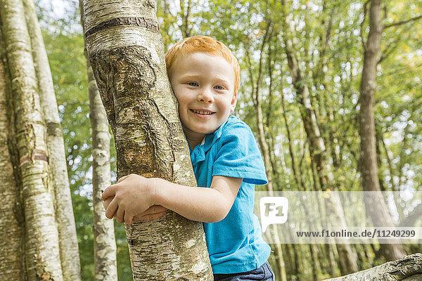 Smiling boy (2-3) hugging tree