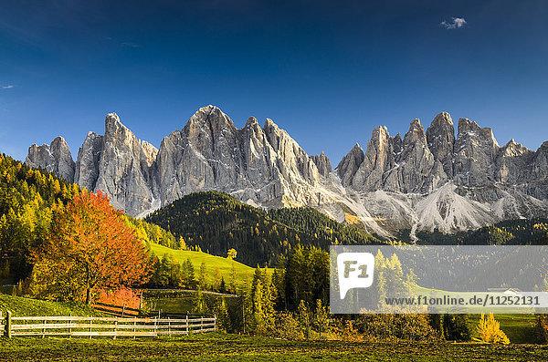 Funes Valley  Odle  dolomites  Alto Adige  Italy.