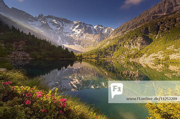 Aviolo lake in Adamello park  province of Brescia  Italy.