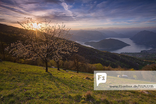 Iseo lake at Sunset province of Brescia  Italy.
