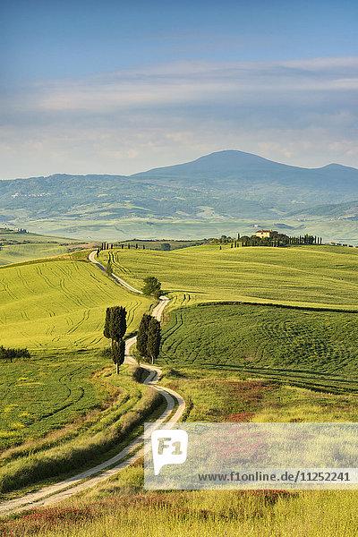 Val d'Orcia  Pienza Tuscany  Italy
