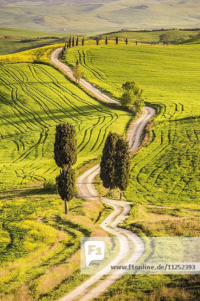 Pienza  Val d'Orcia  Tuscany