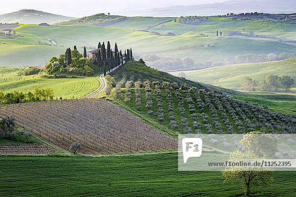 San Quirico  Val d'Orcia  Tuscany. Italy