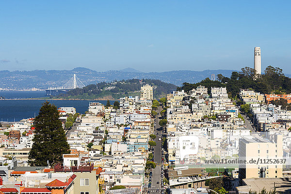 North America  USA  America  California  San Francisco  View of Coit tower from Lombard street