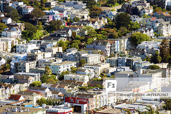 North America  USA  America  California  San Francisco  View of the Castro District from Mount Davidson Park