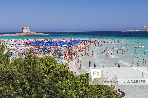 Tourists and beach umbrellas at La Pelosa Beach  Stintino  Asinara National Park  Province of Sassari  Sardinia  Italy  Mediterranean  Europe