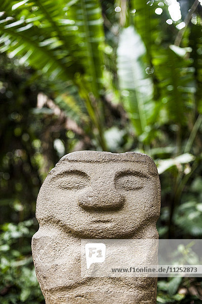 An ancient stone statue  San Agustin Archaeological Park  UNESCO World Heritage Site  Colombia  South America