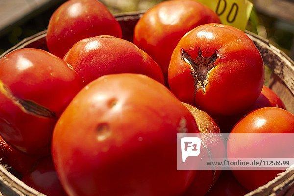 Korb mit roten Beefsteak-Tomaten auf einem Bauernmarkt am Strassenrand (Lancaster  Pennsylvania  USA)