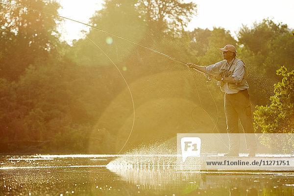 Senior Mann Fliegenfischen am sonnigen Sommersee