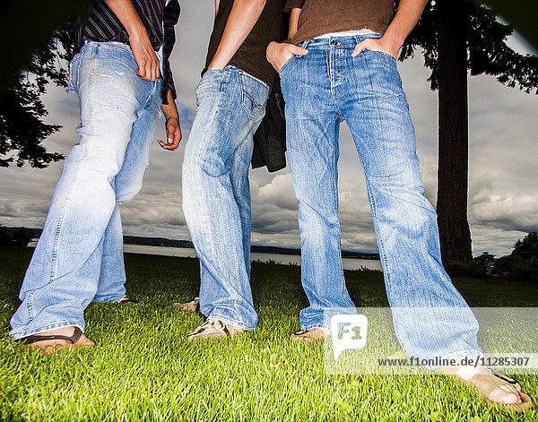 Legs of friends wearing jeans in grass