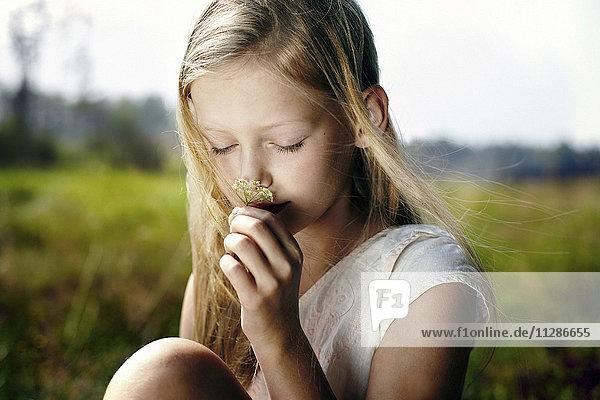 Caucasian girl smelling wildflower in field