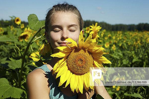 Caucasian girl smelling sunflower in field