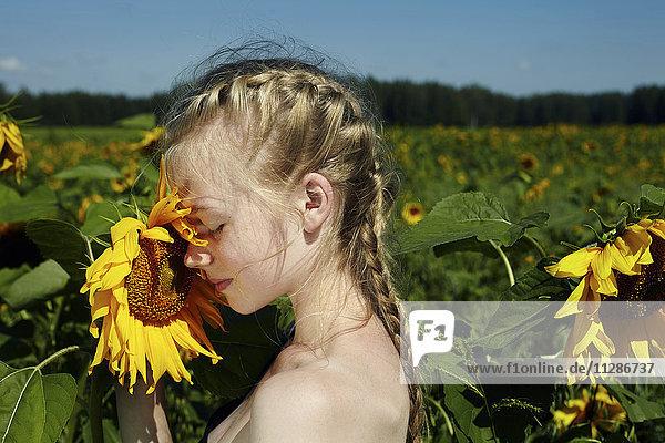Caucasian girl smelling sunflower Caucasian girl smelling sunflower
