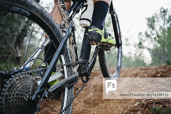 Nahaufnahme von Mountainbikern auf Waldweg