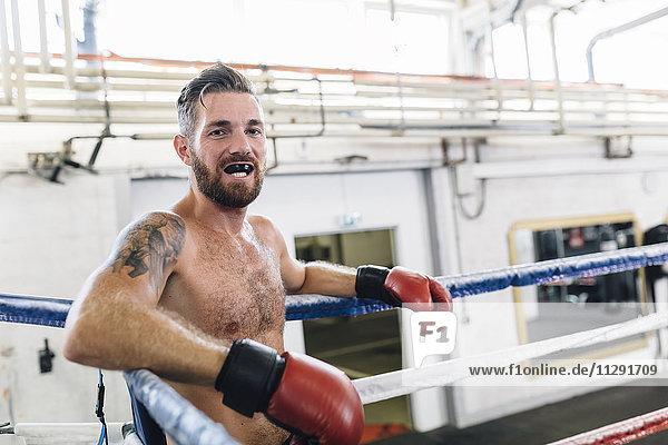 Portrait des Boxers im Boxring