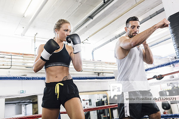 Boxerin beim Trainieren mit dem Coach