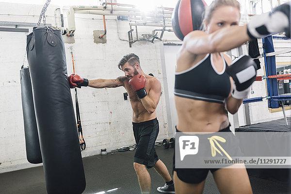 Zwei Boxer trainieren im Boxclub
