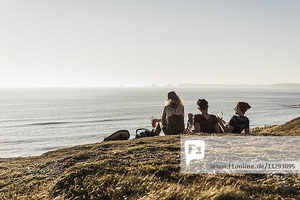 Rückansicht von drei Freunden beim Entspannen am Meer