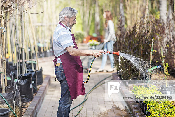 Ältere Gärtner gießen Pflanzen im Gartencenter