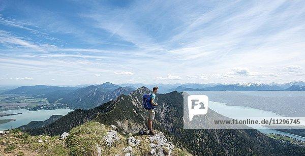 Wanderer am Heimgarten  Ausblick vom Gipfel mit Kochelsee  Walchensee und Herzogstand  Oberbayern  Bayern  Deutschland  Europa