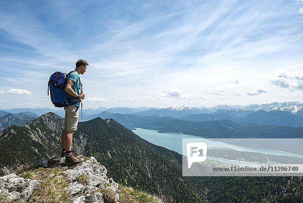 Hiker at Heimgarten  view from the top with Walchensee and Herzogstand  Upper Bavaria  Bavaria  Germany  Europe