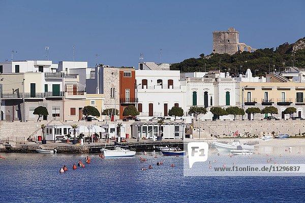 Hafen und Torre dell Alto  Santa Maria al Bagno  Provinz Lecce  Salentische Halbinsel  Apulien  Italien  Europa