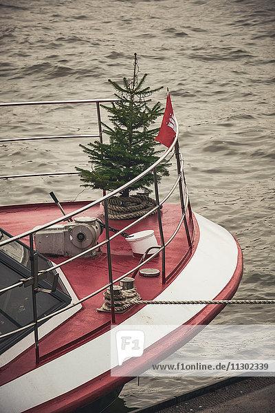 Weihnachtsbaum auf einem Ausflugsschiff  Elbe  Hamburg  Deutschland  Europa