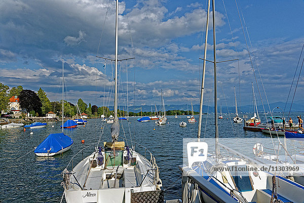 Sports boat harbour  sail boats
