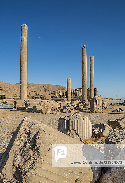 Iran  Persepolis City  Apadana Palace columns and Tripylon of Audience