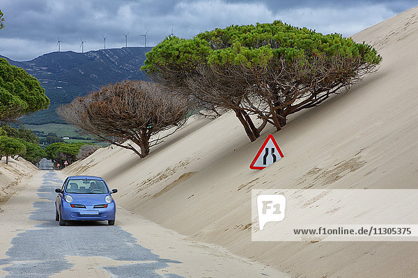 Spain  Andalusia  Punta Paloma sand dunes near Tarifa  road covered by sand